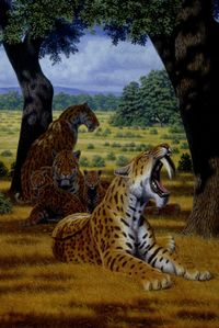 A reconstructed scene in the Pleistocene of western North America, showing a group of sabertooth cats of the species Smilodon fatalis, with several adults and cubs. Artwork by Mauricio Antón. Graphic courtesy of UCLA Newsroom.