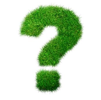 Green trivia