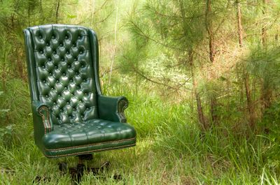 Green your furniture