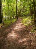 Trails 004