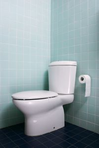 Choose a high efficiency toilet