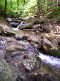 Trails 012