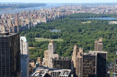 Celebrate in NYC's Central Park