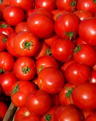 Farmersmarket_tomatoes