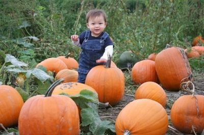 Create a family tradition of visiting a pumpkin patch