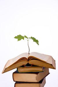 Book.tree