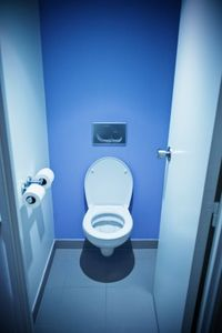 November 19 is World Toilet Day
