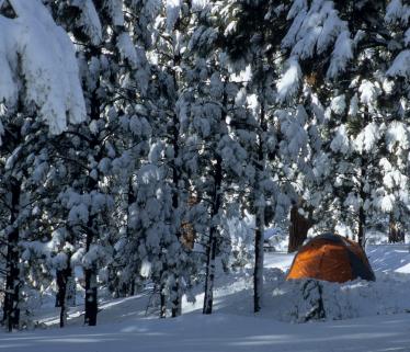 Snowy.tent