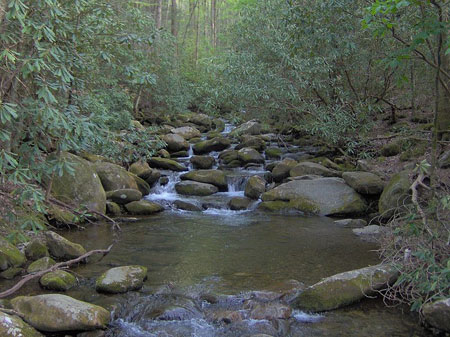 Appalachian-mountain-stream
