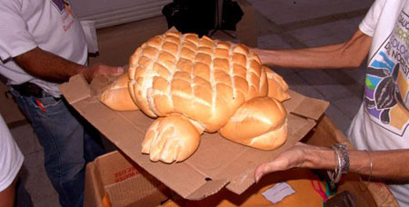 Turtle-bread