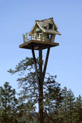 pete nelson treehouses of the world. everyoneu0027s childhood dream of living in a treehouse can now be reality u2013 thanks to pete nelson aka treehouses the world