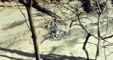 Toxic-heavy-metal-pollution