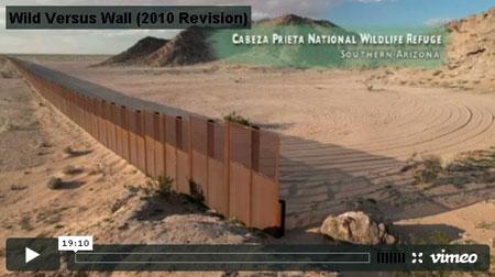 Wild-Versus-Wall-video
