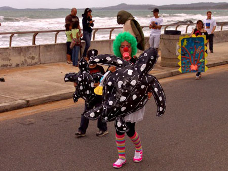 Turtle-costumes