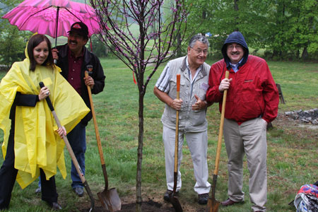 Meadowood-tree-planting