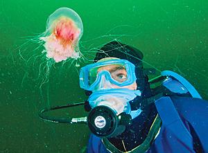 Fabien Cousteau underwater