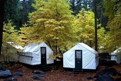 Charmant Tent Cabins At Camp Curry, Yosemite National Park. Photo Courtesy Delaware  North Campanies.