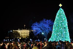 AmericanForestsNationalChristmasTree2