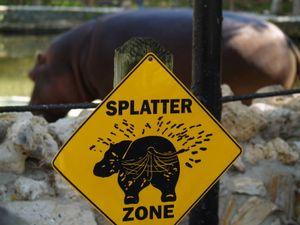Zoo Animal Waste