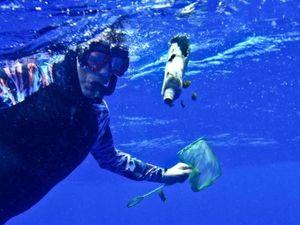 Charles Moore underwater