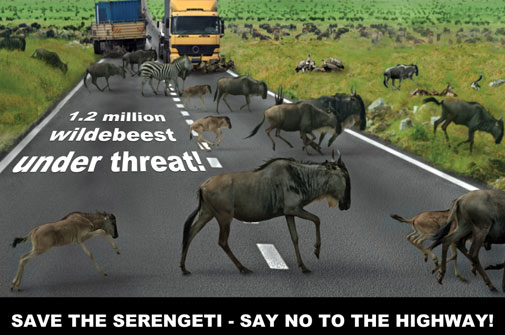 Serengeti-Bypass-Postcard-by-NABU