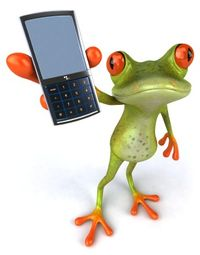 Frog with phone