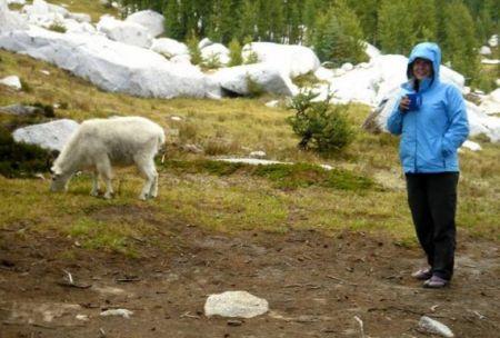 Kathleen Wilson Sierra Club Resilient Habitats2