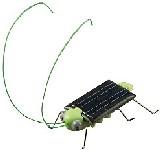 Grasshopper ee022