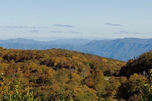 Cherokee NF R. Neal flickr