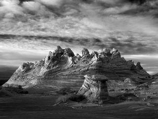 The Desert West