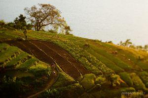20100115_guatemala_223