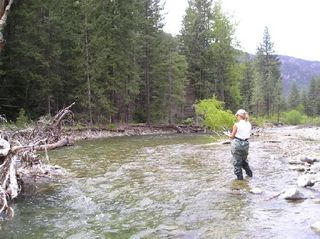 USDA, stream inventory