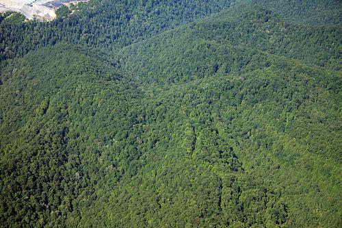 Blair-Mountain-battle-site