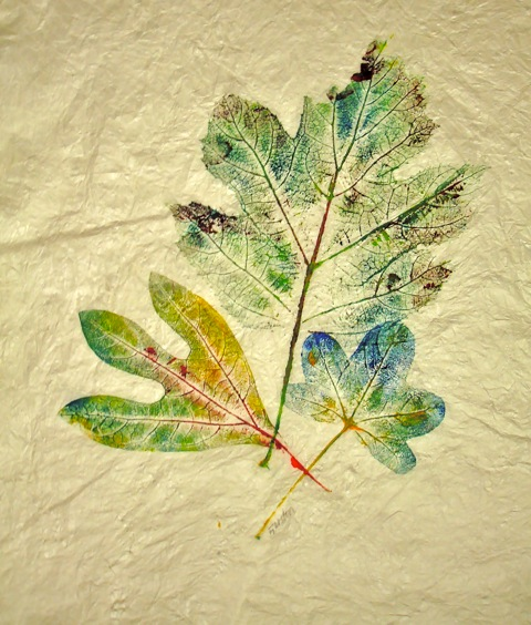 Low-tech Leaf Printing - Explore