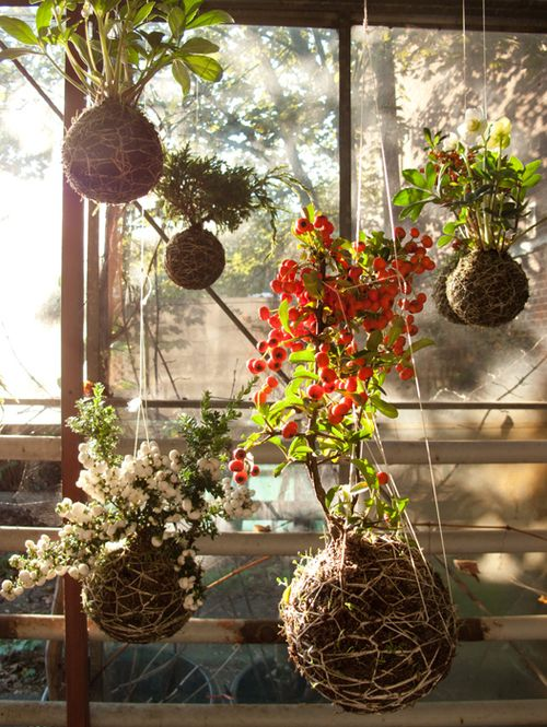 Snowberry & Crabapple