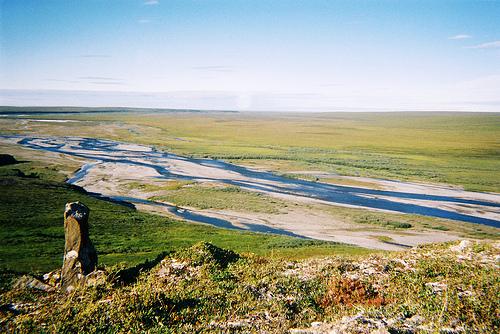 Coastal plain_ANWR