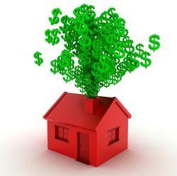 Money-guzzling home