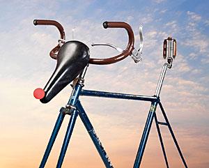 Reindeer bicycle