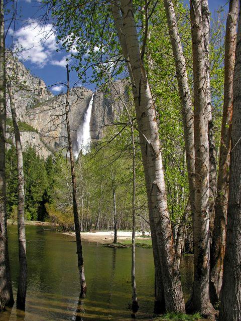 Upper Yosemite Fall & Merced River_04-29-08_Kenny Karst