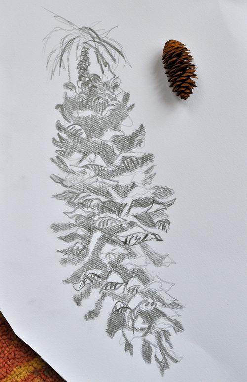 Muir, Sue's drawing