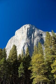 Sierra Explore El Cap Nose Yosemite