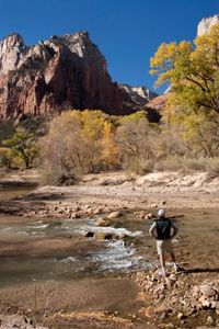 Zion National Park_iStock_000019410381XSmall