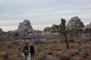 Walking out of Joshua Tree
