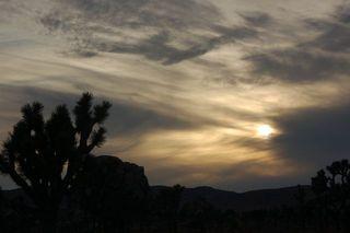 Moon Rise over Joshua Tree
