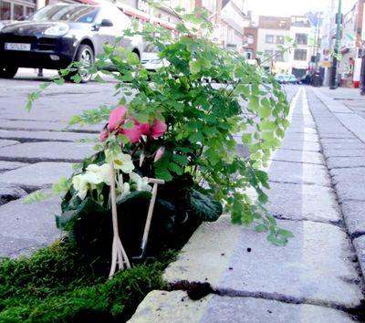 Brick-lane-garden