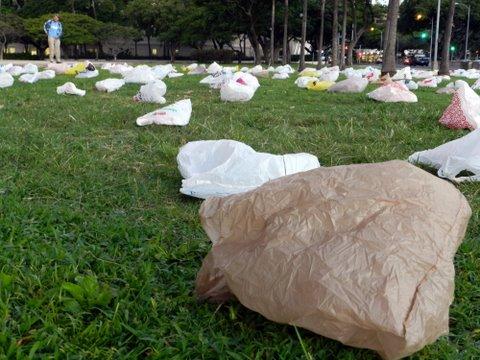 Plastic bag 3 courtesy Diana Sellner