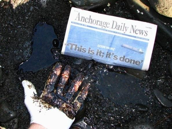 D1-Valdez spill 2008