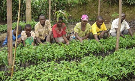 COTAP-project-in-Uganda