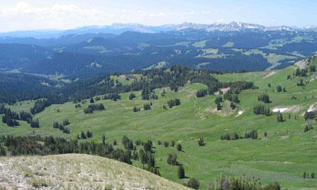 Upper-Hoback-Basin