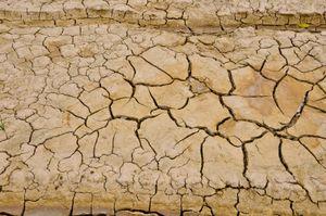 Drought iStock_000020877764XSmall